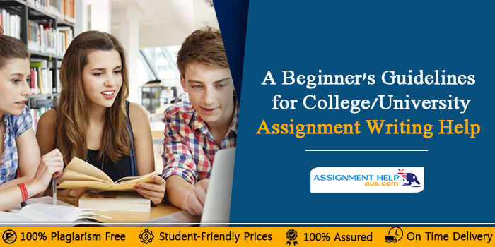 A-Beginner's-Guidelines-for-College/University-Assignment-Writing-Help