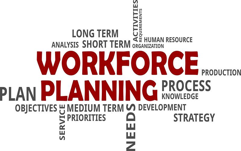 BSBHRM513 Manage Workforce Planning